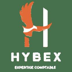 Logo blanc hybex